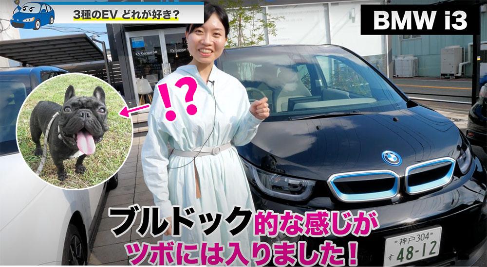 EV車種比較-BMWはブルドッグ